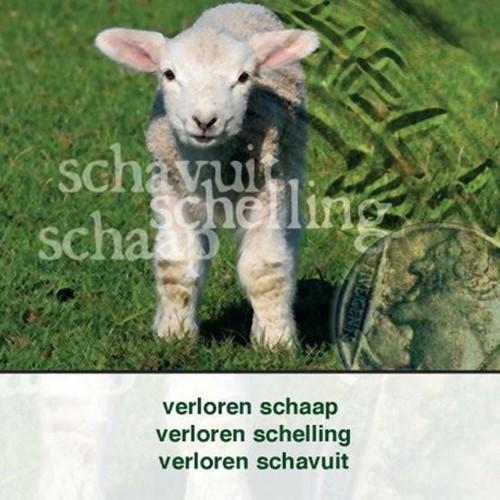 Verloren schaap schelling schavuit (Boek)
