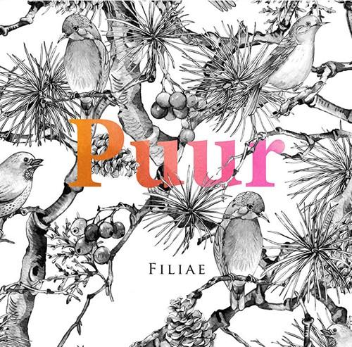 Puur (CD)