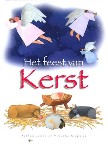 Het feest van kerst (Hardcover)