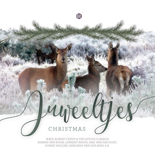 Juweeltjes Christmas (Cadeauproducten)