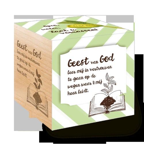 Groei Kubus hout:  Geest van God....... (Hout)