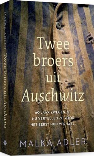 Twee broers uit Auschwitz (Paperback)