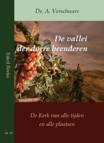 De vallei der dorre beenderen (Paperback)
