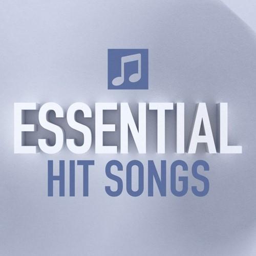Essential Hit Songs (CD)