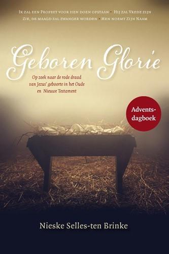 Geboren glorie (Paperback)