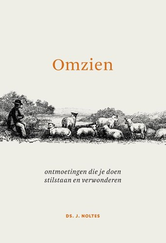 Omzien (Paperback)