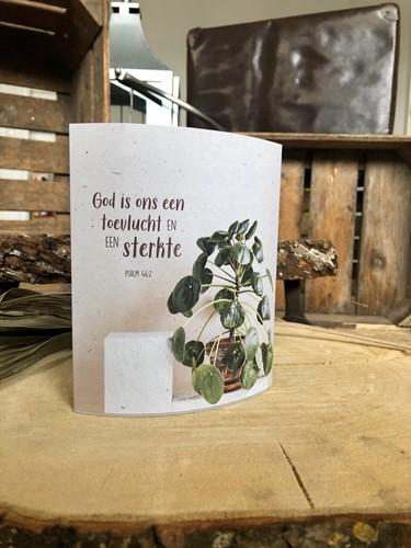 Lichtje voor jou: Hoe wonderlijk mooi is uw eeuwige trouw (Cadeauproducten)
