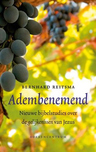 Adembenemend (Paperback)