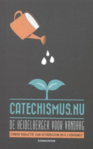 Catechismus.nu (Paperback)