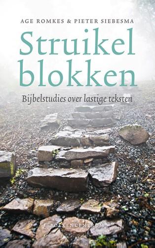 Struikelblokken (Paperback)