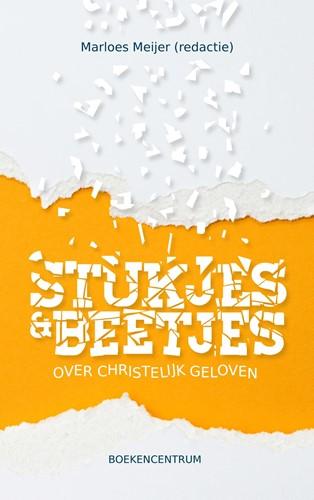 Stukjes & beetjes (Paperback)