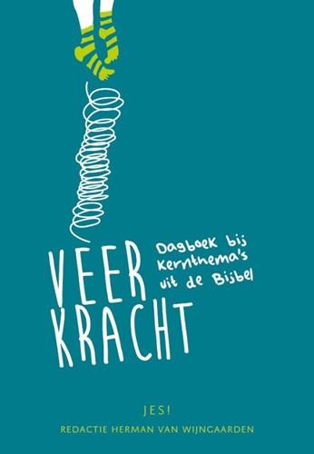 Veerkracht (Paperback)