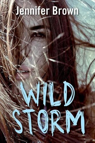 Wild storm (Paperback)