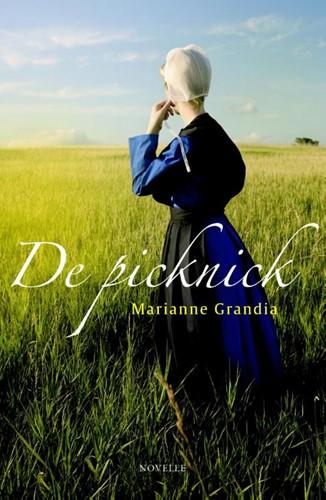 De picknick (Paperback)
