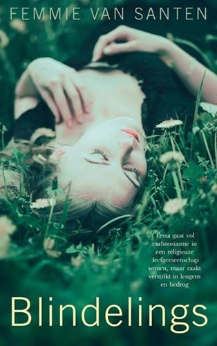 Blindelings (Paperback)