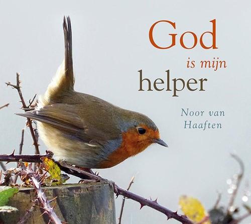 God is mijn helper (Hardcover)