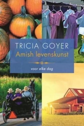 Amish levenskunst (Paperback)