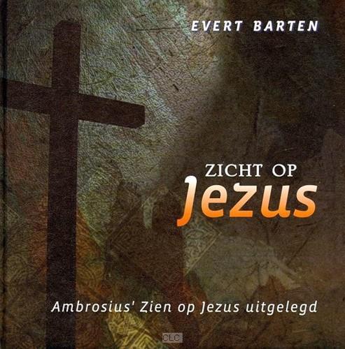 Zicht op Jezus (Hardcover)