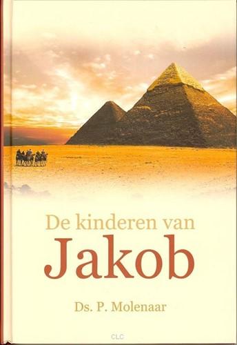 De kinderen van Jakob (Hardcover)