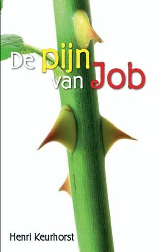 De pijn van Job (Boek)