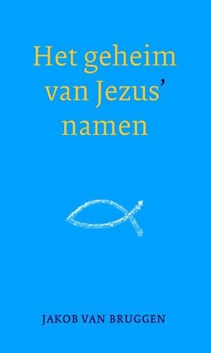 Het geheim van Jezus' namen (Hardcover)