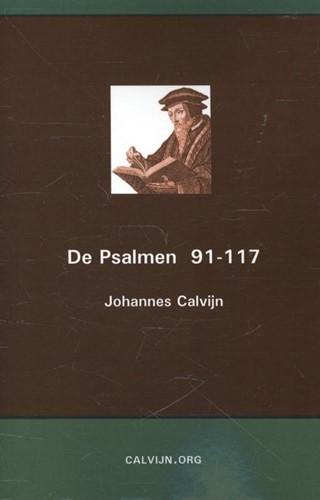 De Psalmen 91-117 (Paperback)