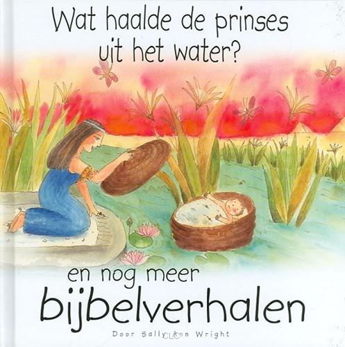Wat haalde de prinses uit het water? (Hardcover)