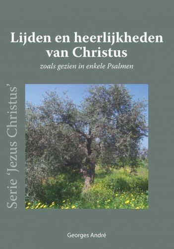 Lijden en Heerlijkheden van Christus (Paperback)