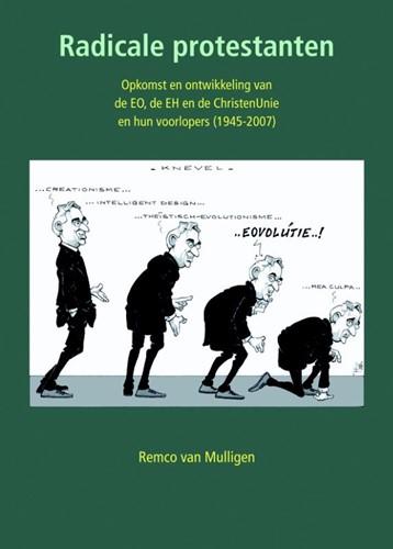 Radicale protestanten (Paperback)