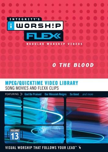 Iworship flexx 13 (DVD-rom)