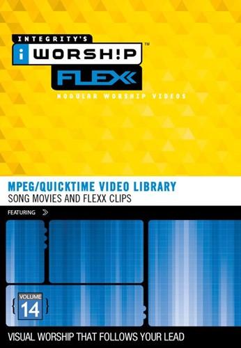 Iworship flexx 14 (DVD-rom)