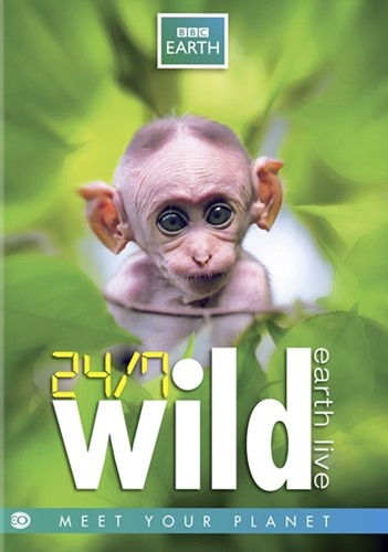 24/7 Wild - Earth Live (EO-BBC Earth DVD (DVD)