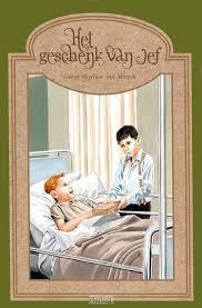 De gevonden schat (Hardcover)