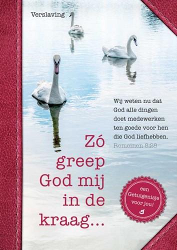 Zó greep God mij in de kraag (Paperback)