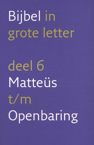 Bijbel in grote letter 6 Matteüs t/m Openbaring (Boek)