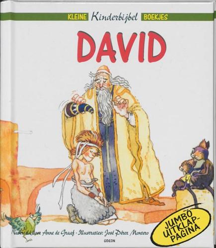 David (Hardcover)
