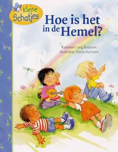 Hoe is het in de hemel? (Paperback)