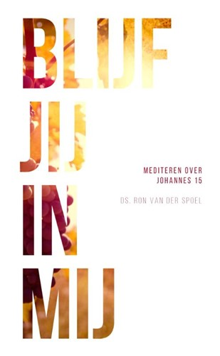 Blijf jij in mij (Paperback)