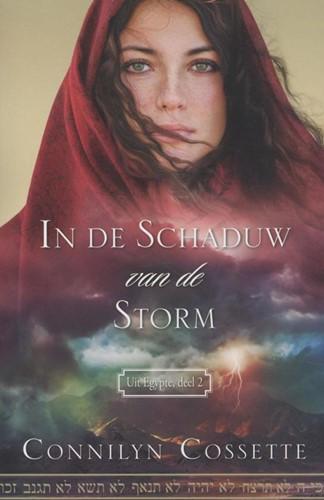 In de schaduw van de storm (Paperback)