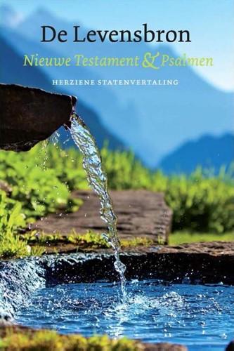 De Levensbron (Paperback)