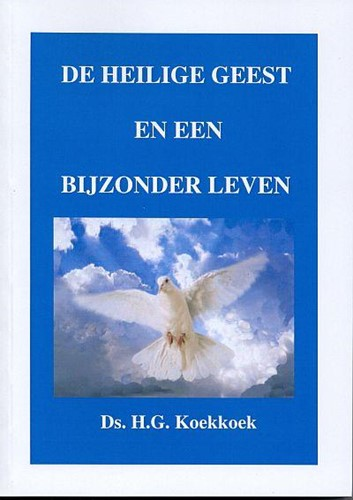 De Heilige Geest en een bijzonder leven (Boek)