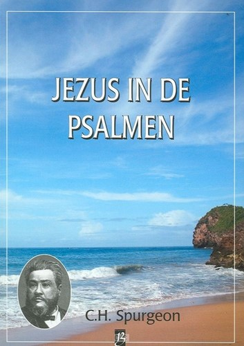 Jezus in de Psalmen (Hardcover)