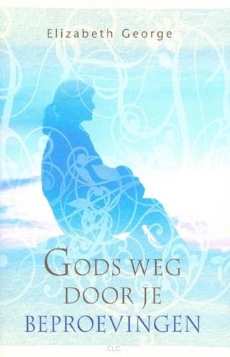 Gods weg door je beproevingen (Boek)
