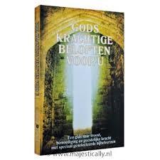 Gods krachtige beloften voor u (Paperback)