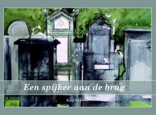 Een spijker aan de brug (Hardcover)