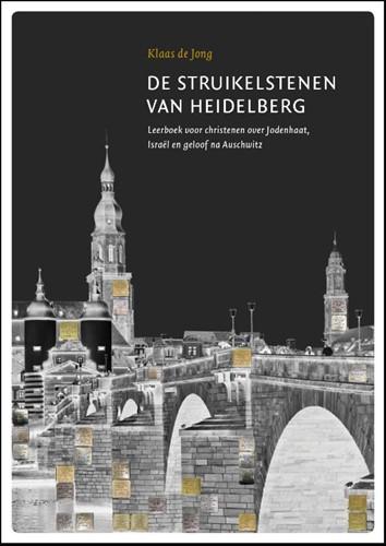 De struikelstenen van Heidelberg (Boek)