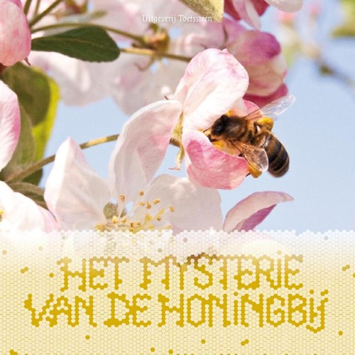 Het mysterie van de honingbij (Paperback)