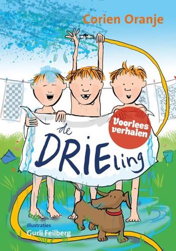 De drieling (Hardcover)