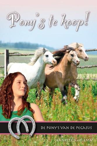 Pony's te koop! (Boek)
