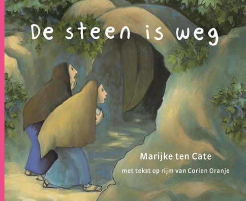 De steen is weg (Kartonboek)